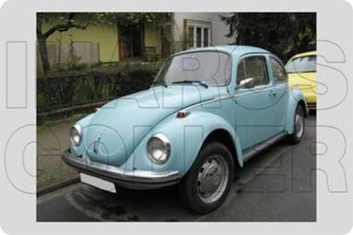 VW 1303